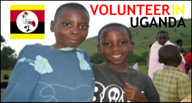 volunteer_header